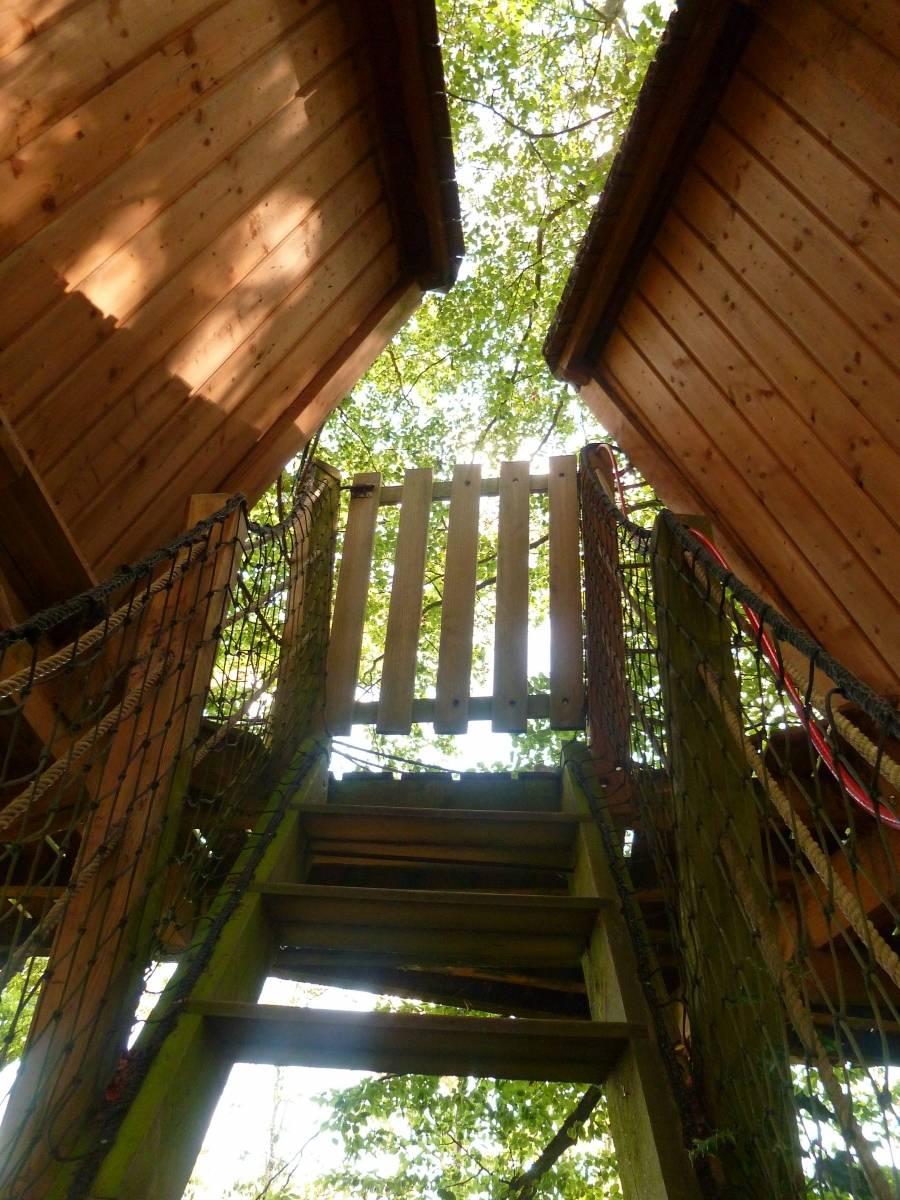 cabane perchée du camping